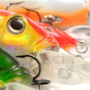 3 Types Of Crankbaits That Catch Fish